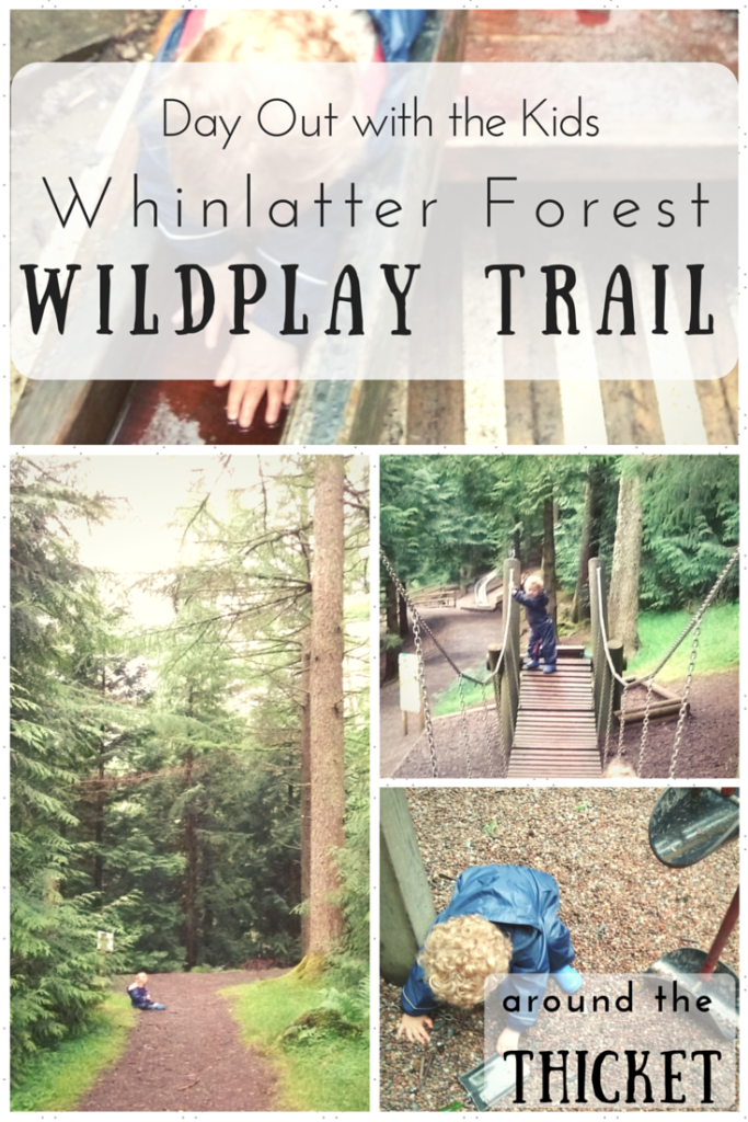 Day Out at Whinlatter WildPlay Trail