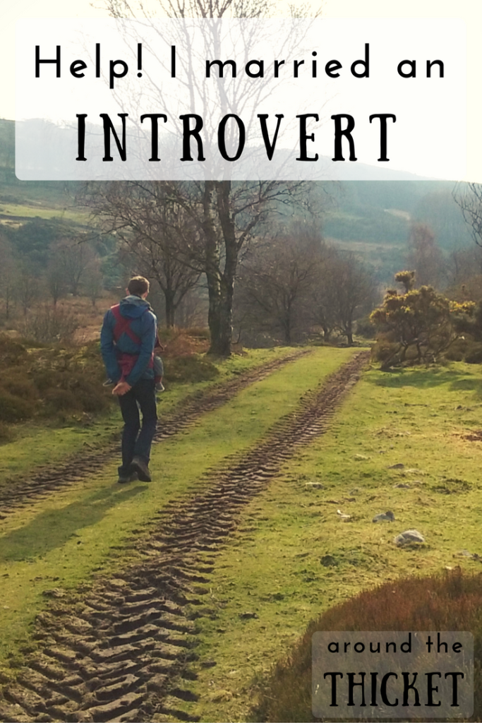 Married an Introvert