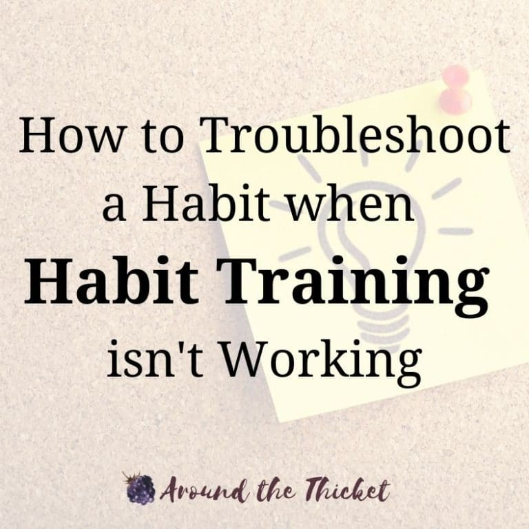 How to Troubleshoot a Habit when Habit Training isn't Working
