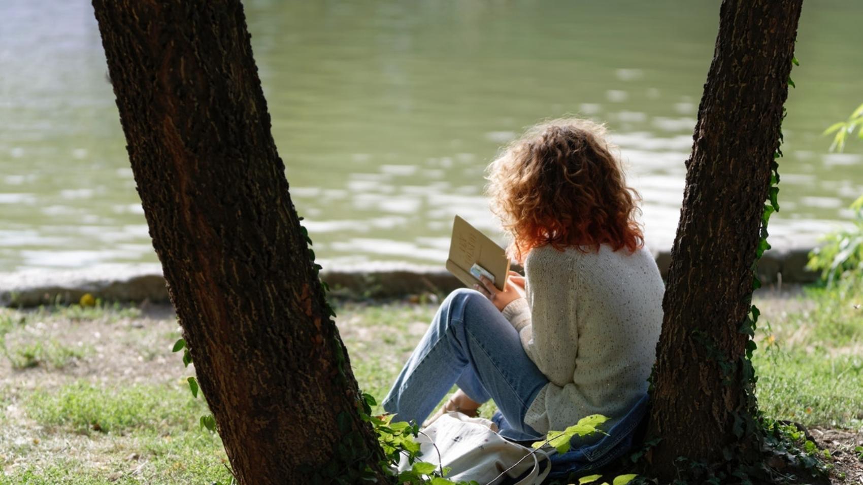 book-lake-park-2961121