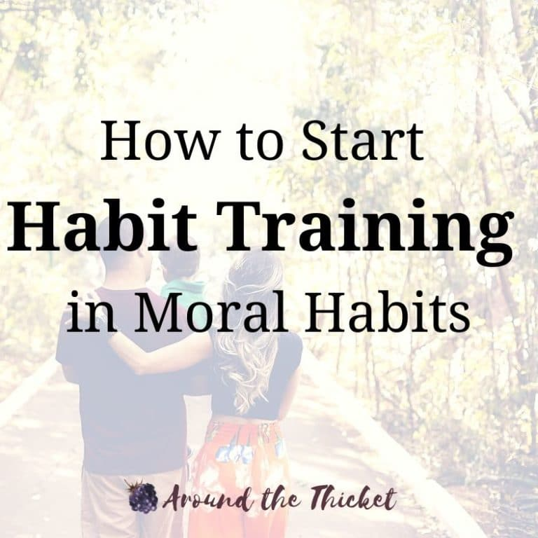 How to Start Habit Training in Moral Habits