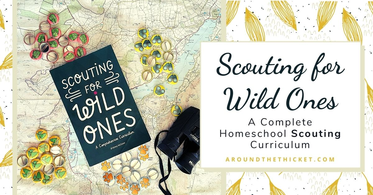 homeschool scouting curriculum review