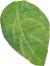 leaf 1 ping
